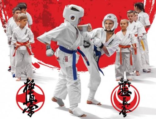 Nabór na zajęcia z Karate w Domu Ludowym w Hermanowej!